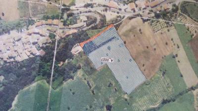 Terreno Agricolo in Vendita a Lapedona