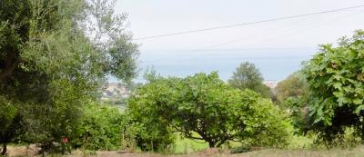 casa - porzione - terreno in Vendita a Fermo