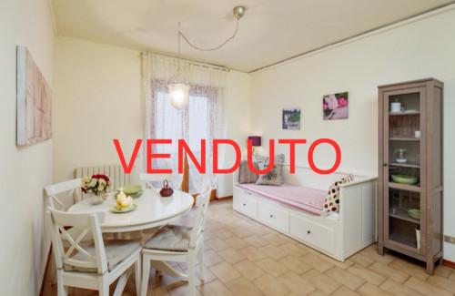 <span>Viareggio</span>