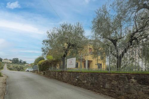 <span>Montecarlo</span>