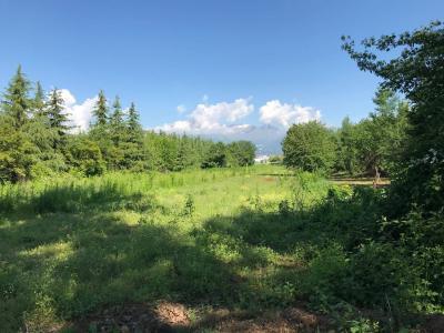 Terreno agricolo in Vendita a Gaglianico