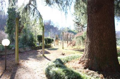 Villa in Vendita a Salussola
