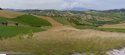 Terreno Agricolo in Vendita a Monsampolo del Tronto