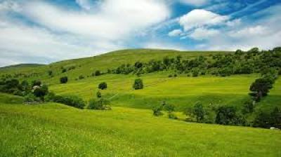 Terreno edificabile in Vendita a Gorla Maggiore