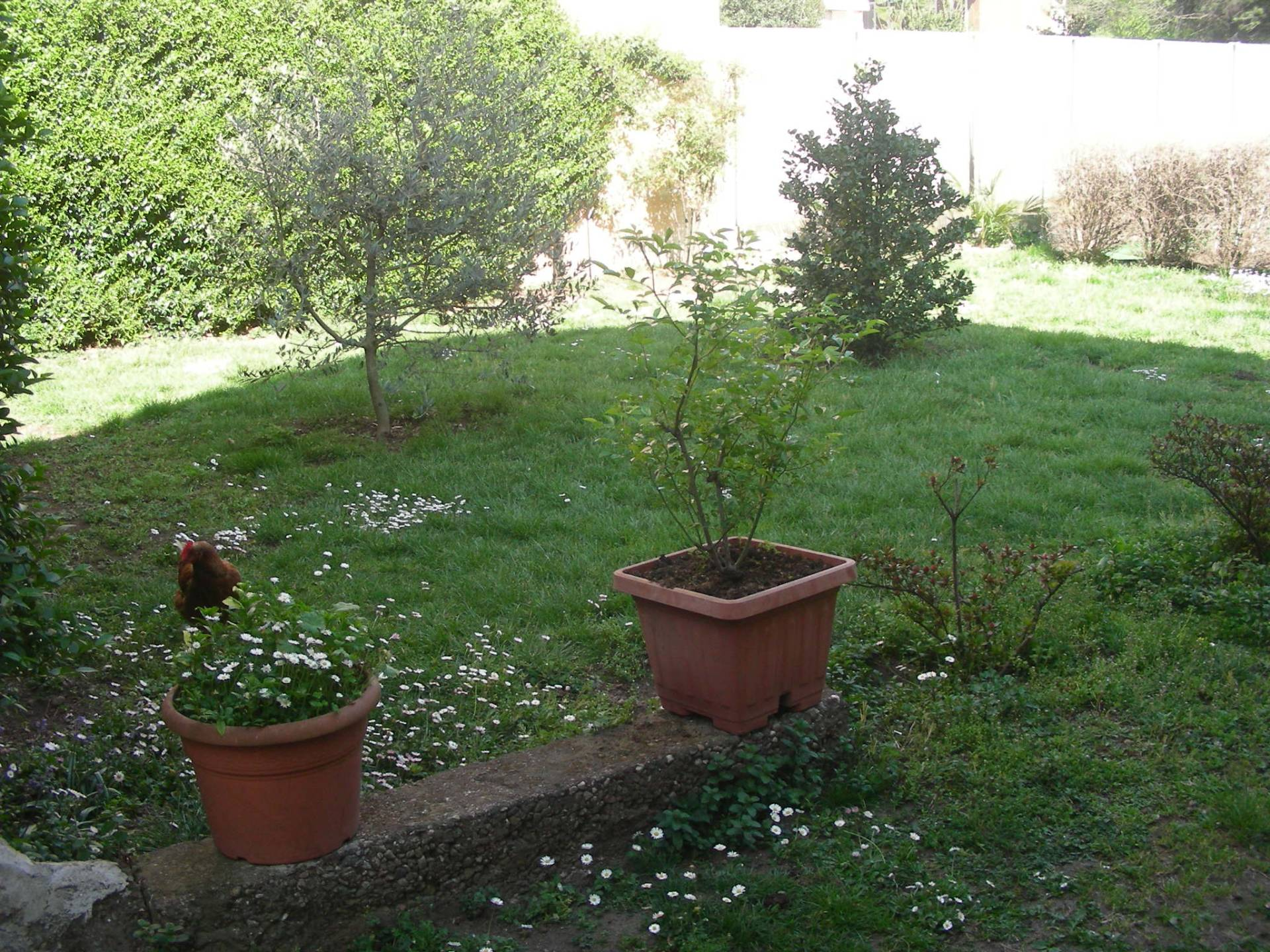 Terreno Edificabile Residenziale in vendita a Busto Arsizio, 9999 locali, zona Zona: Redentore, Trattative riservate | CambioCasa.it