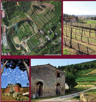 Building Land for Sale to Pietrasanta