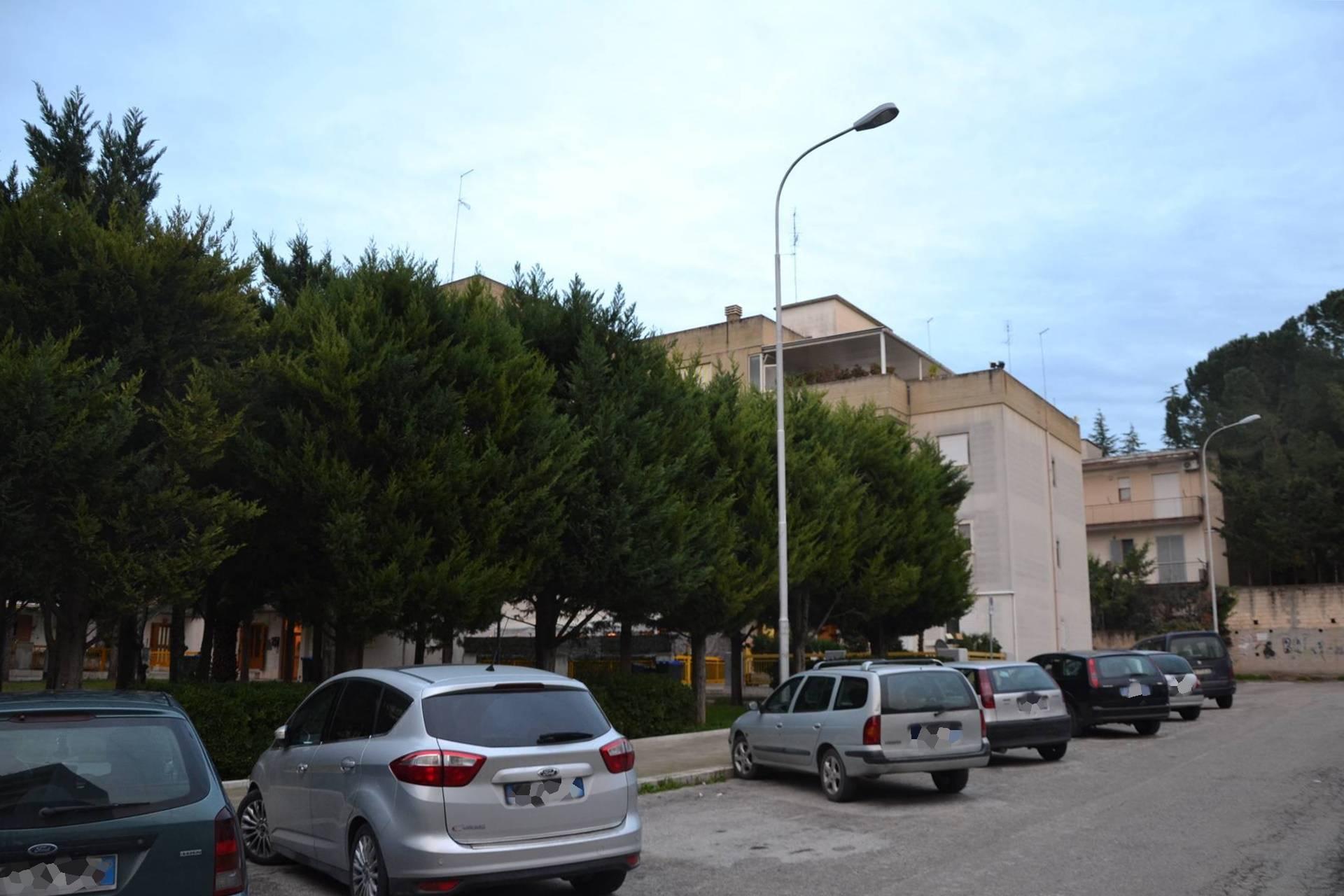 vendita appartamento canosa di puglia   115000 euro  3 locali  100 mq