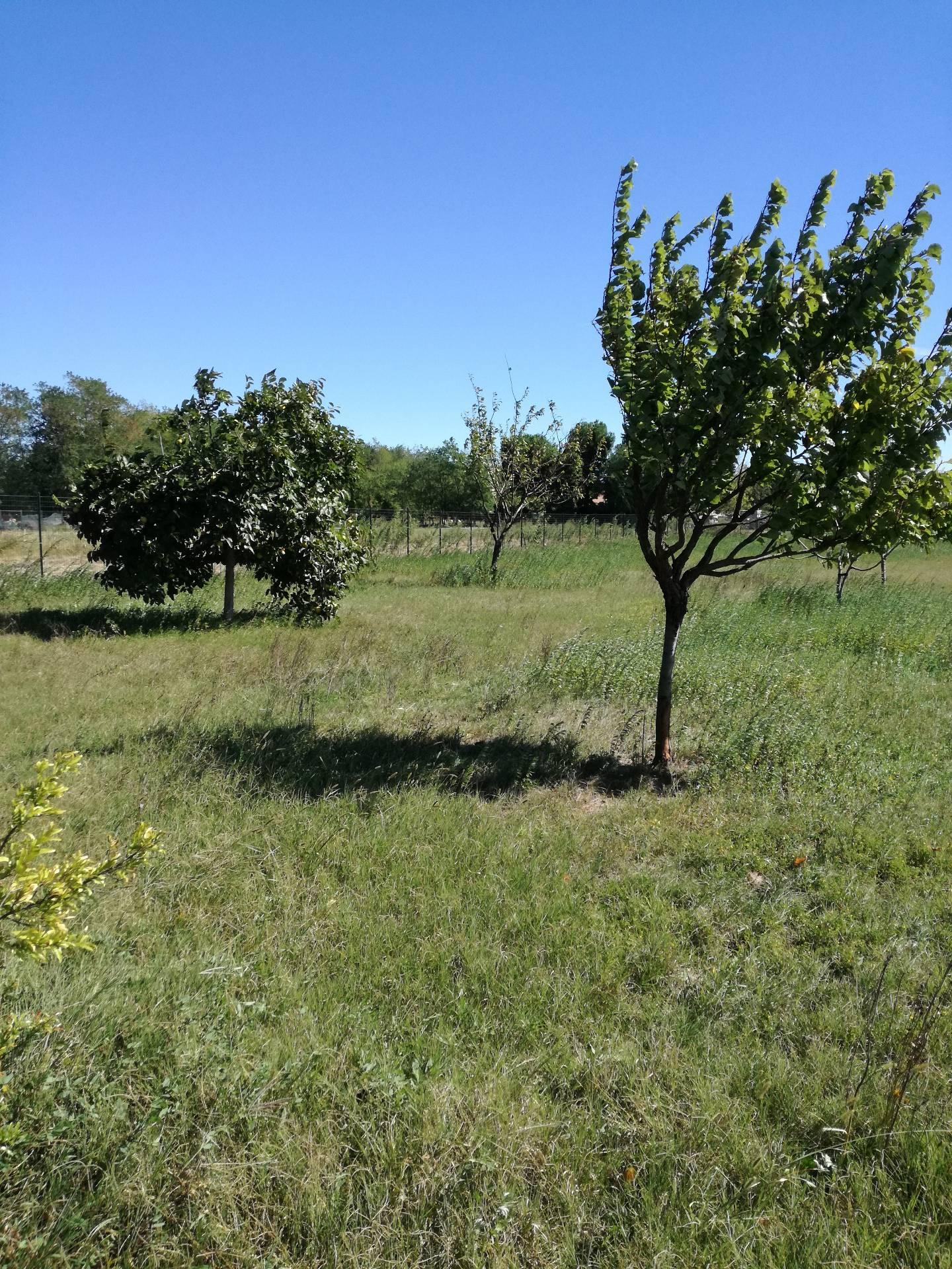 Terreno Agricolo in vendita a Nerviano, 9999 locali, zona atola, prezzo € 45.000 | PortaleAgenzieImmobiliari.it