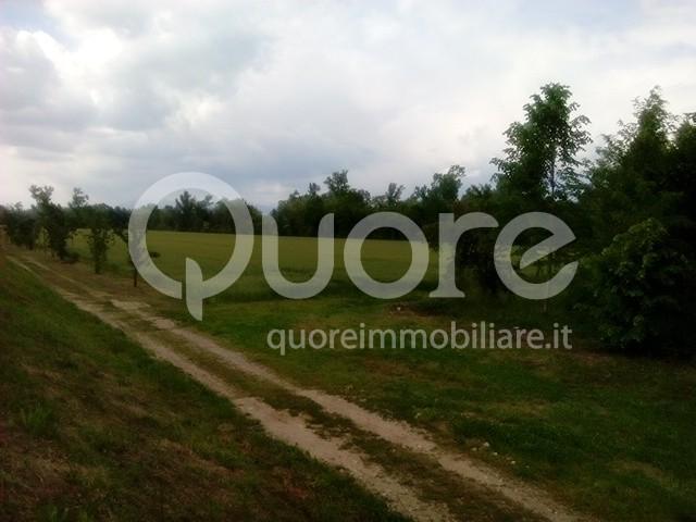 Terreno Agricolo in vendita a Pavia di Udine, 9999 locali, prezzo € 410.000   Cambio Casa.it