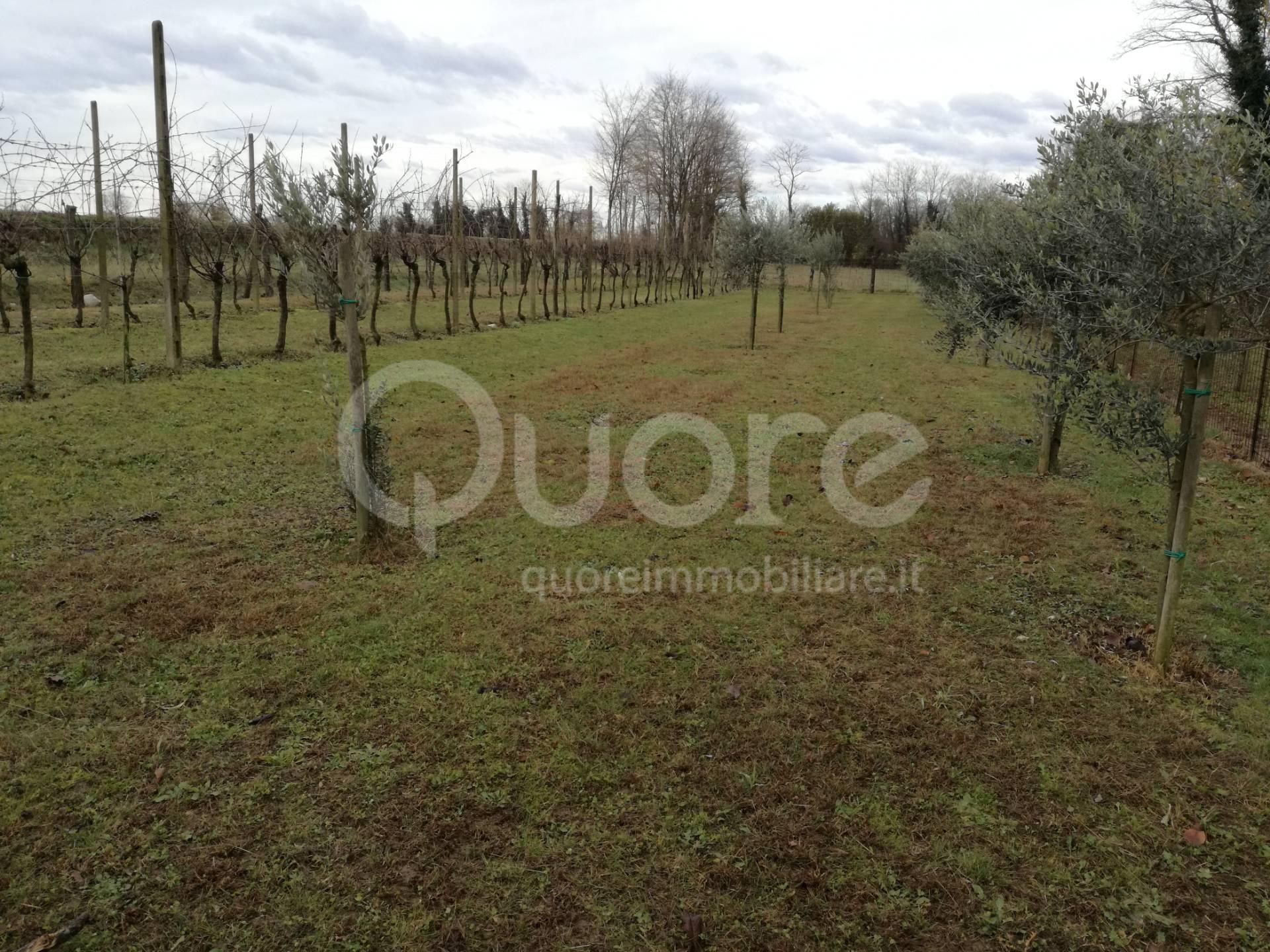 terreno agricolo in vendita a pasian di prato