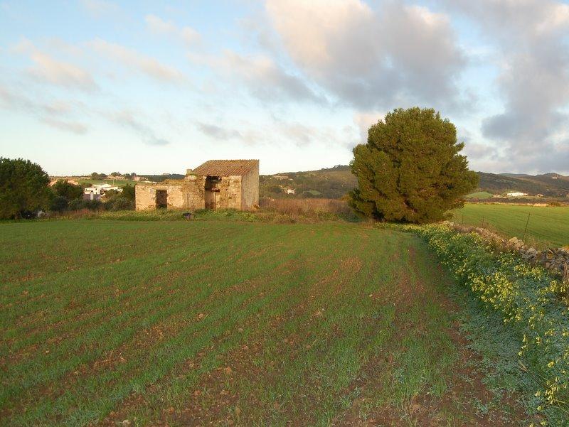 Foto - Rustico In Vendita Carloforte (ci)