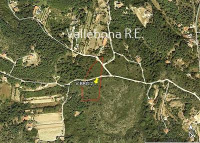 Terreno agricolo in Vendita a Carloforte