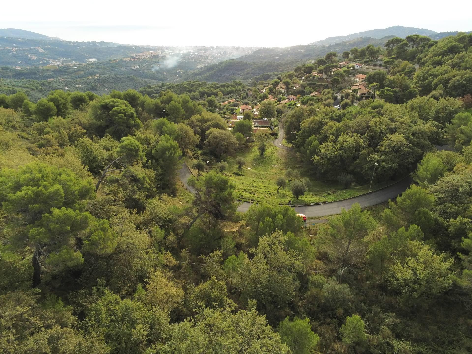 Terreno Agricolo in vendita a Diano Arentino, 9999 locali, prezzo € 545.000 | CambioCasa.it
