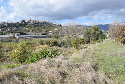 Terreno edificabile in Vendita a Diano San Pietro