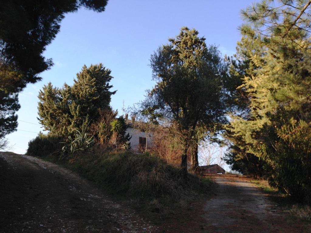 Soluzione Indipendente in vendita a Monteleone di Fermo, 9 locali, prezzo € 188.000   Cambio Casa.it