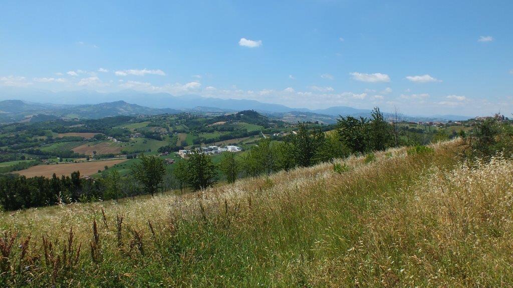 Terreno Agricolo in vendita a Montegiorgio, 9999 locali, prezzo € 45.000 | Cambio Casa.it