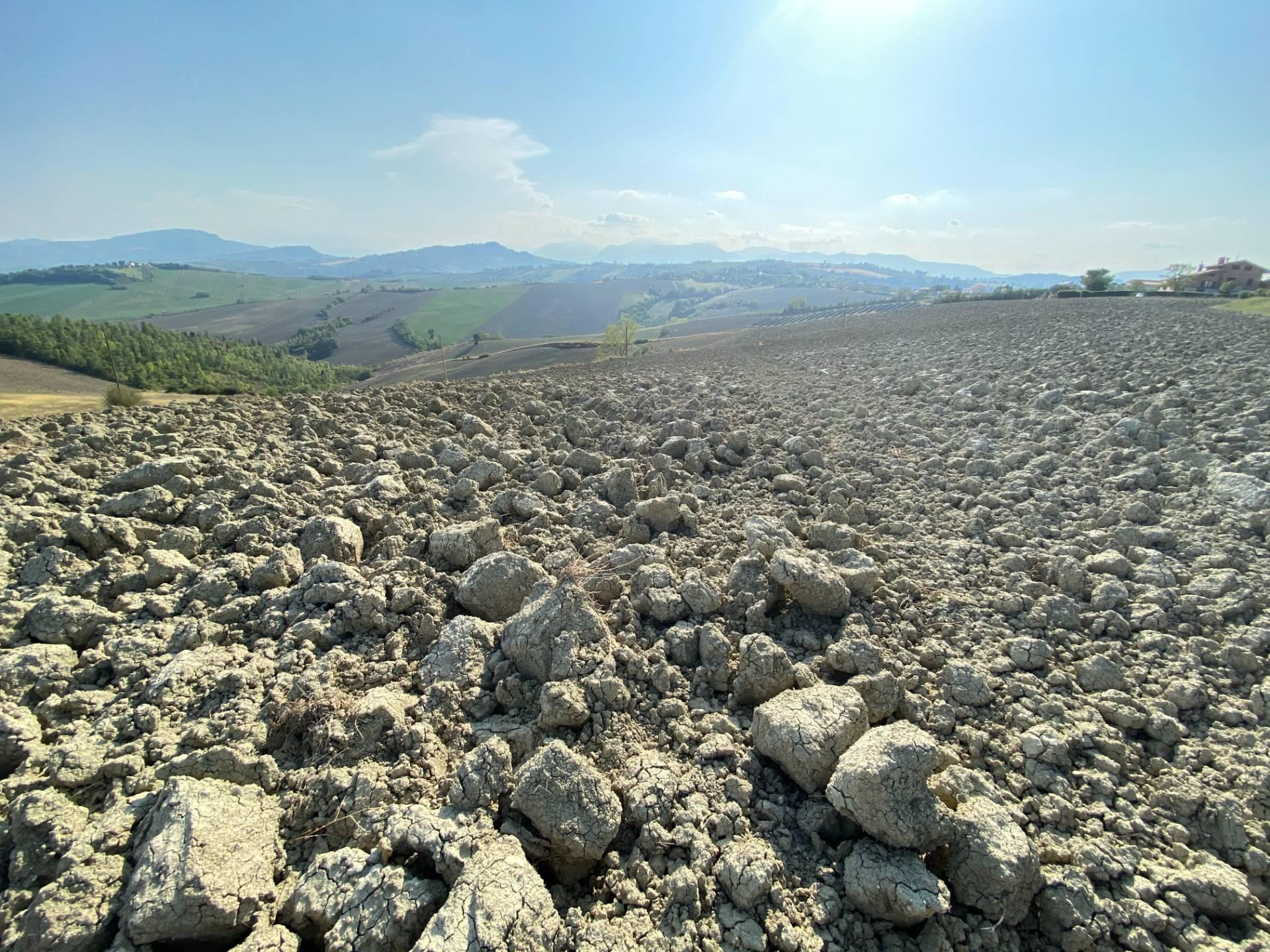 Terreno Agricolo in vendita a Falerone, 9999 locali, prezzo € 65.000 | CambioCasa.it