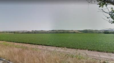 Terreno Agricolo in Vendita a Morrovalle
