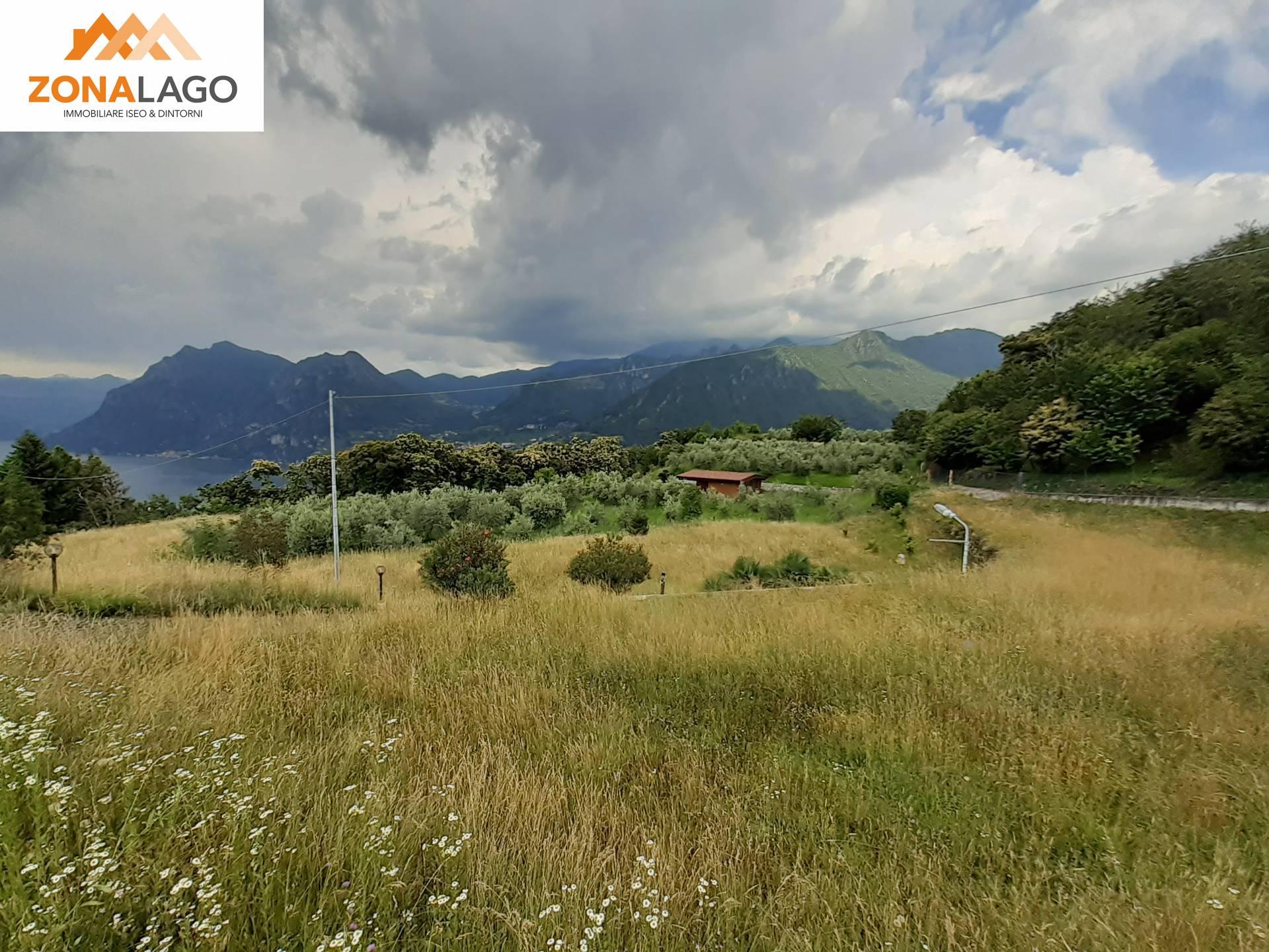 Terreno Agricolo in vendita a Monte Isola, 9999 locali, prezzo € 195.000 | PortaleAgenzieImmobiliari.it