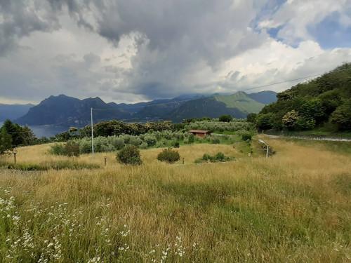 Terreno Agricolo in Vendita a Monte Isola