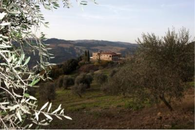 Homestead for Sale to Castiglione d'Orcia