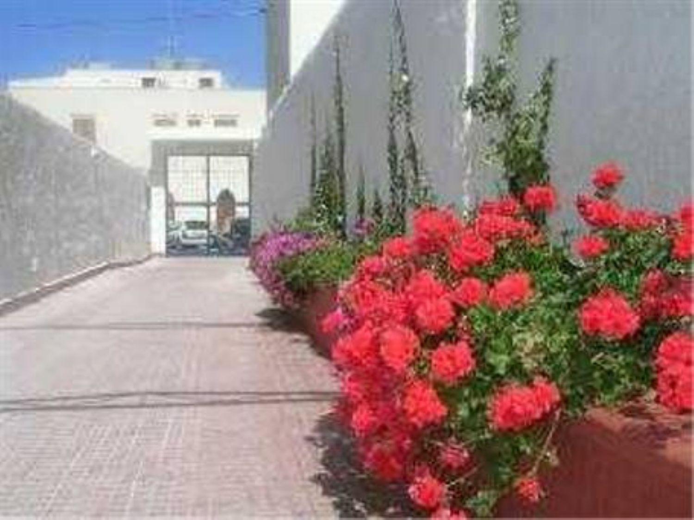 Appartamento in affitto a San Vito Lo Capo, 3 locali, prezzo € 780 | Cambio Casa.it