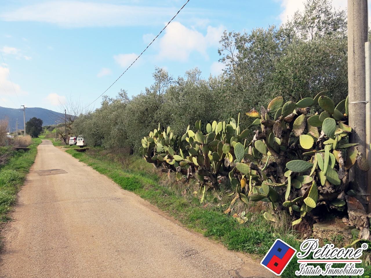 Terreno Agricolo in vendita a Fondi, 9999 locali, zona Località: Semicentro, prezzo € 60.000 | CambioCasa.it
