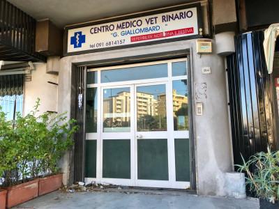 Vai alla scheda: Locale Commerciale Affitto Palermo