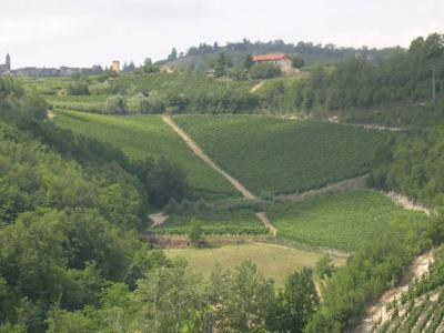 Casale in Vendita a Acqui Terme