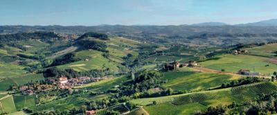 Azienda Agricola in Vendita a Barolo