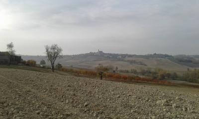 Azienda Agricola in Vendita a Casorzo