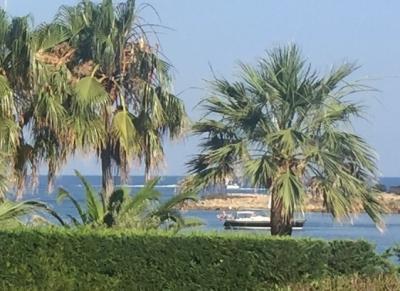 Villa in Vendita a Antibes