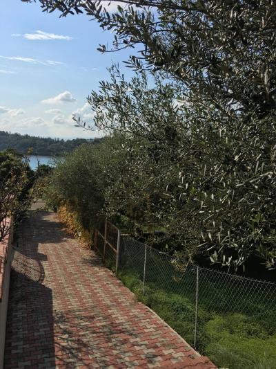 Vai alla scheda: Terreno  Residenziale Vendita - Tortolì (OG) - Codice -46/24