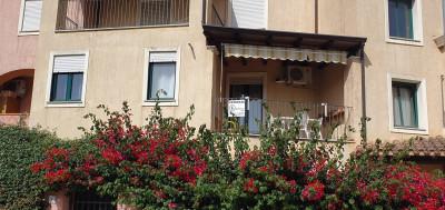 Vai alla scheda: Appartamento Vendita - Tortolì (OG) - Codice -26/20
