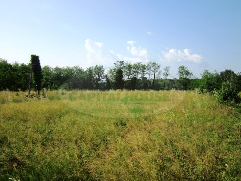 Terreno Agricolo in vendita a Sant'Agata De' Goti, 9999 locali, prezzo € 45.000 | CambioCasa.it
