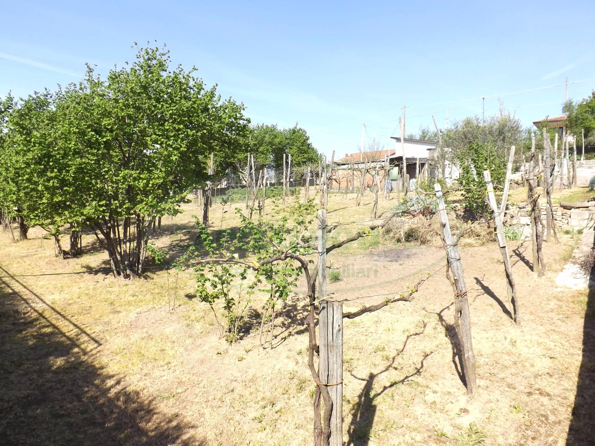 Terreno Agricolo in vendita a Manocalzati, 9999 locali, prezzo € 15.000 | Cambio Casa.it