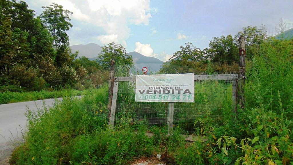 Terreno Agricolo in vendita a Mugnano del Cardinale, 9999 locali, prezzo € 30.000 | CambioCasa.it