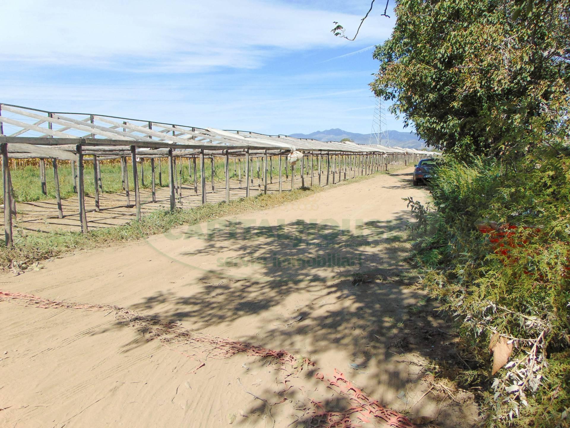 Terreno Agricolo in vendita a Santa Maria Capua Vetere, 9999 locali, zona Località: Zonanuova, prezzo € 7.000 | CambioCasa.it