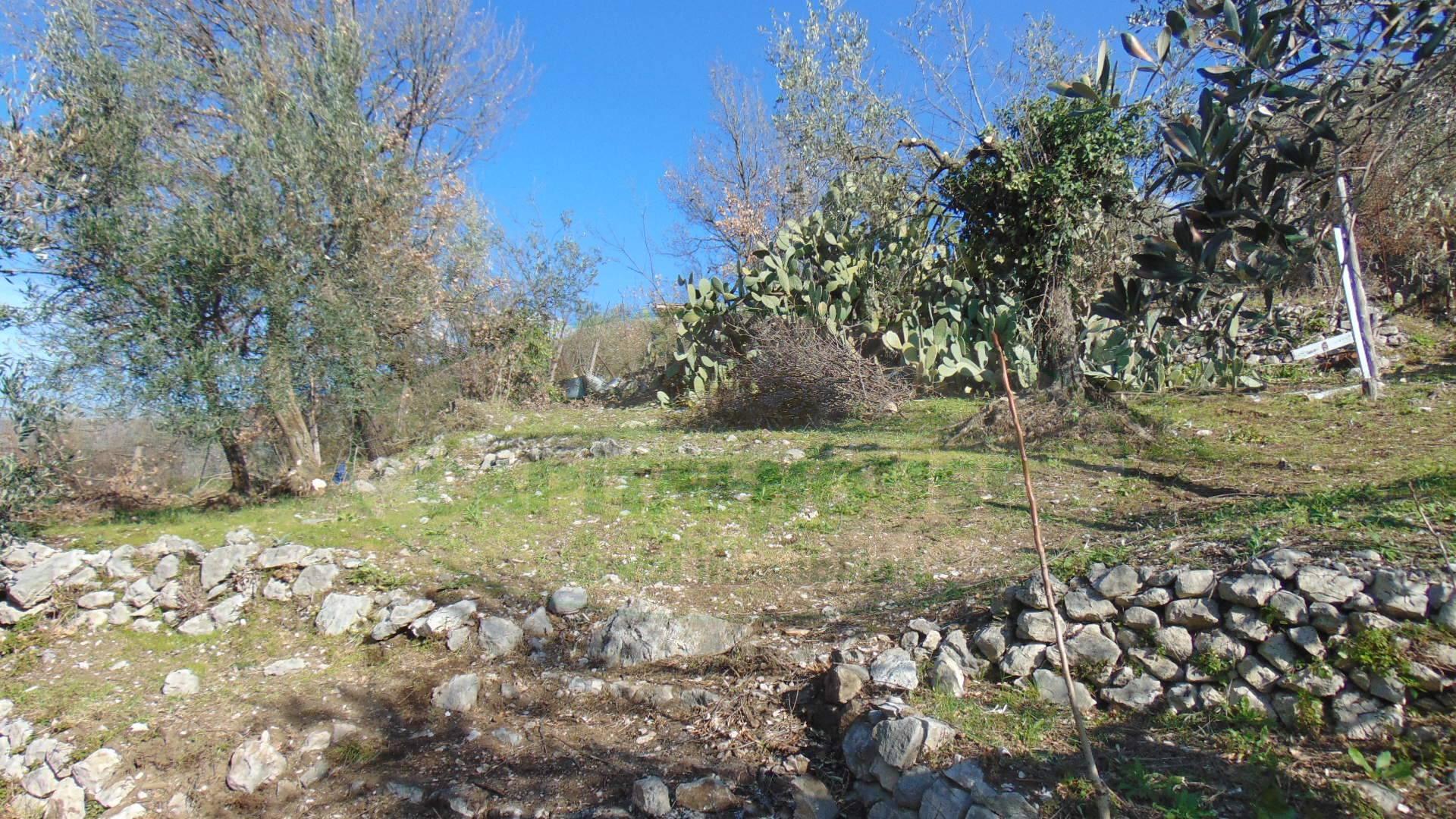 Terreno Agricolo in vendita a Mugnano del Cardinale, 9999 locali, prezzo € 60.000 | CambioCasa.it