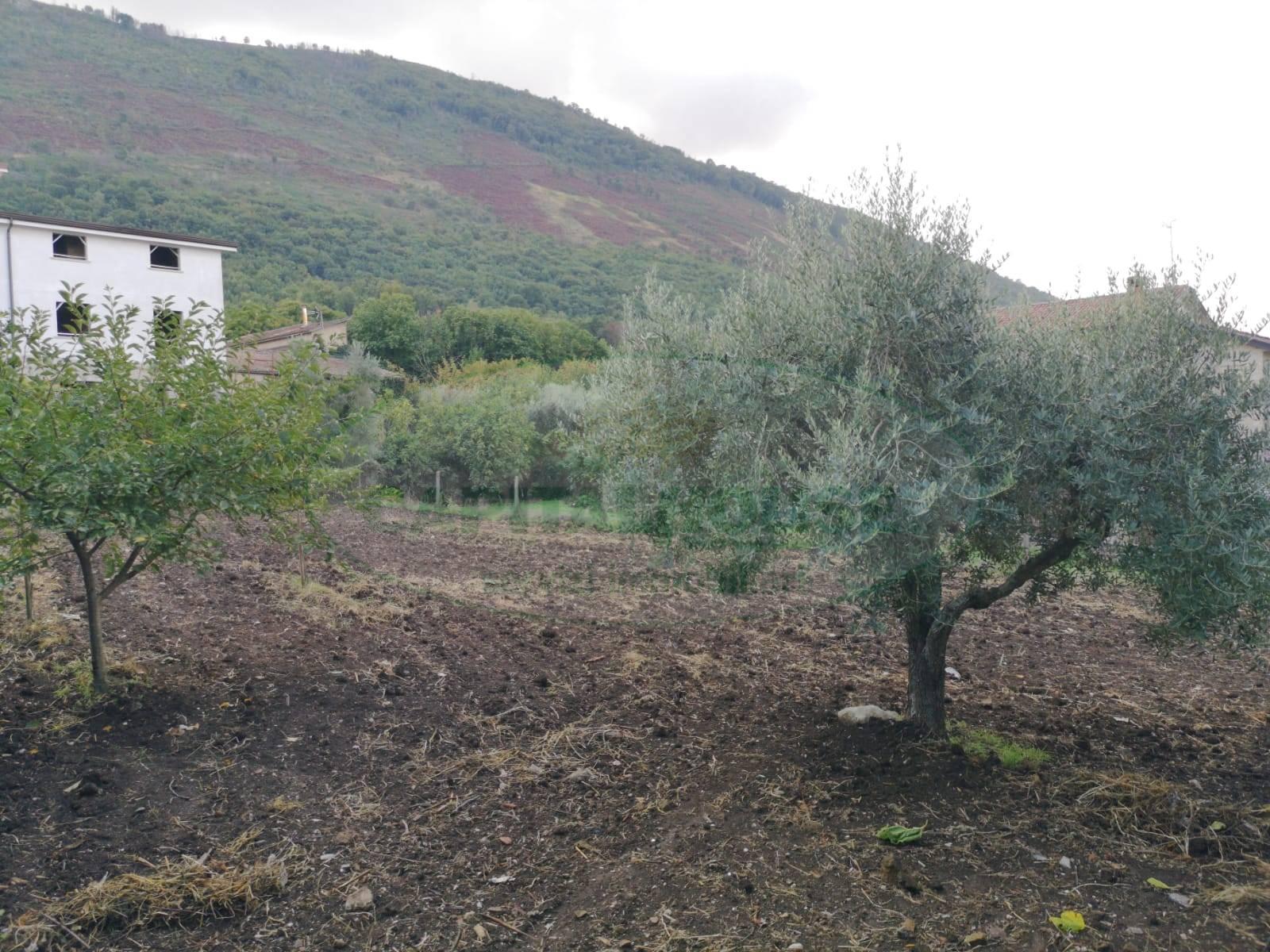 Terreno Edificabile Residenziale in vendita a Sant'Agata De' Goti, 9999 locali, zona Zona: Bagnoli, prezzo € 48.000 | CambioCasa.it