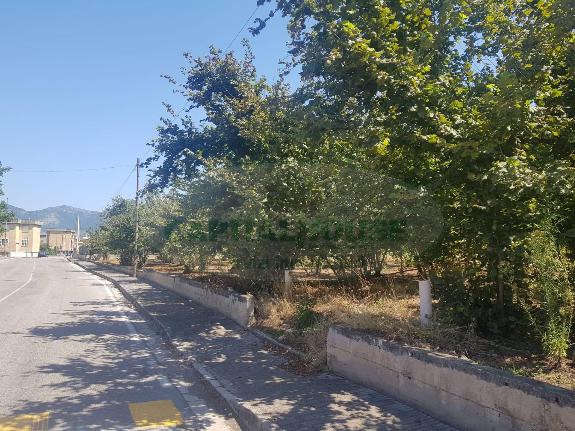 Terreno Agricolo in vendita a Comiziano, 9999 locali, prezzo € 48.000   CambioCasa.it