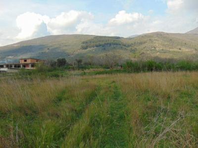 Vai alla scheda: Terreno  Residenziale Vendita - Quadrelle (AV) - Rif. 8426