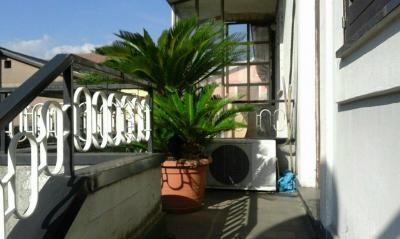 Vai alla scheda: Casa Semindipendente Vendita - Montoro (AV) | Caliano - Rif. 8330