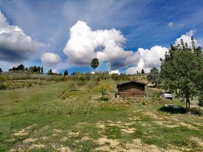 Vai alla scheda: Terreno Agricolo Vendita - Certaldo (FI) - Rif. 8417