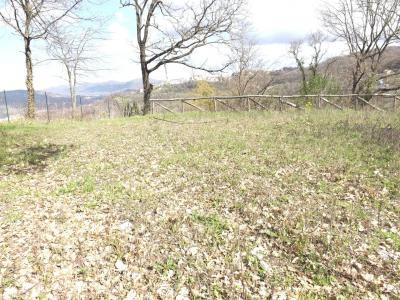 Vai alla scheda: Terreno Agricolo Vendita - Manocalzati (AV) - Rif. 8440