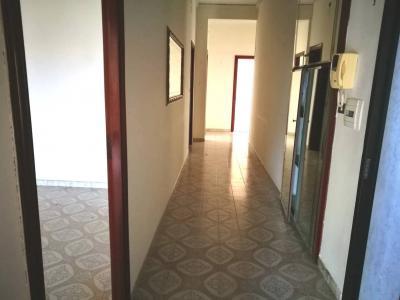 Vai alla scheda: Appartamento Affitto - Casoria (NA) | Padula - Calvanese - Rif. V8069