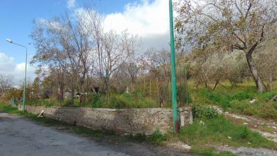 Vai alla scheda: Terreno  Residenziale Vendita - Quadrelle (AV) - Rif. 7884
