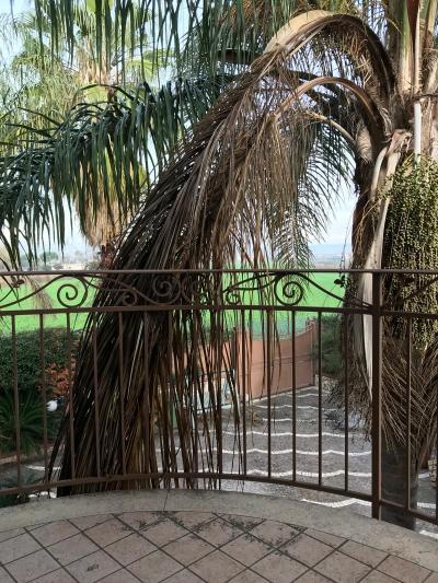 Vai alla scheda: Appartamento Affitto - Afragola (NA) | Zona San Marco - Rif. 8320