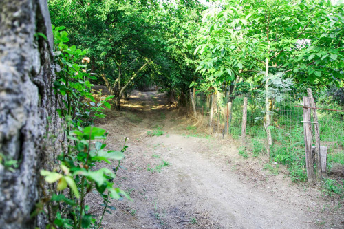Vai alla scheda: Terreno Agricolo Vendita - Nola (NA) - Rif. 8173