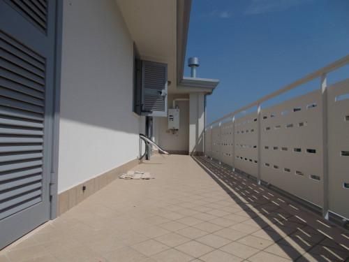 Vai alla scheda: Attico / Mansarda Affitto - Santa Maria Capua Vetere (CE) | Zona Ufficio - Rif. 500GM
